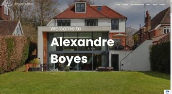 Alexandre Boyes screenshot