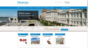 Bluerow Homes screenshot