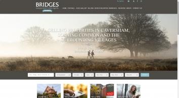 Bridges screenshot