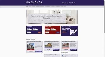 Carnabys screenshot