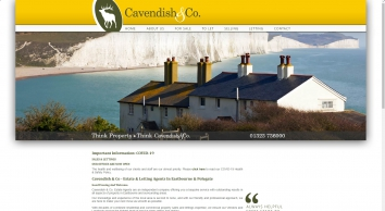 Cavendish & Co. screenshot